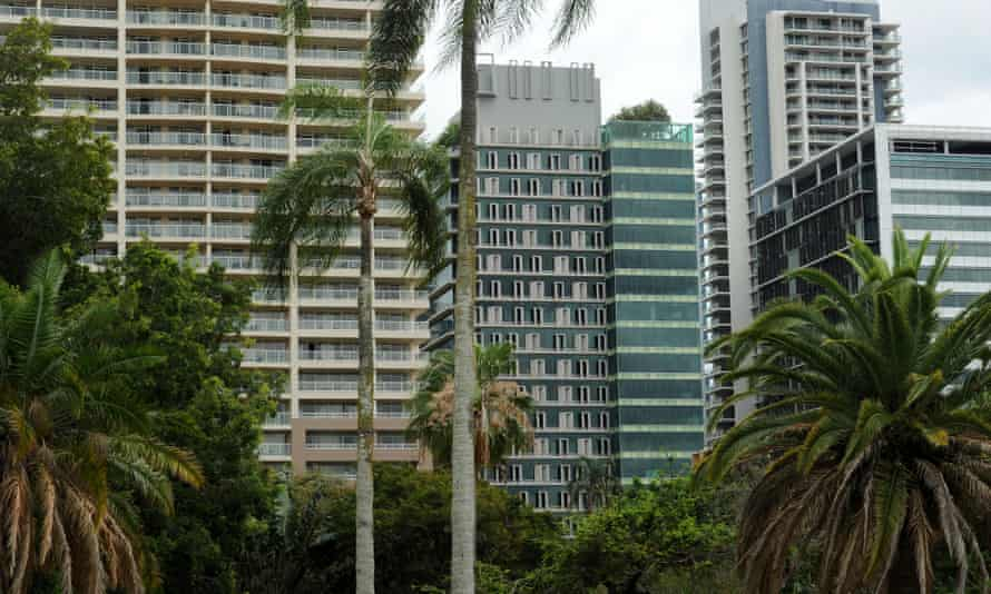 High rise buildings in Brisbane in 2012 surrounded by trees. Urban forests are said to have a positive effect on pollution as well as health benefits for citizens.