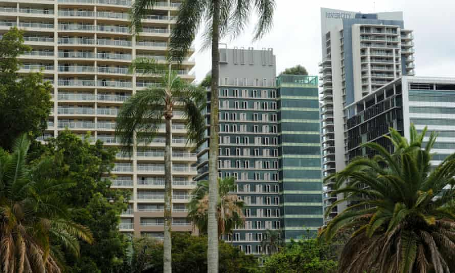 Palm trees in Brisbane's central business district.