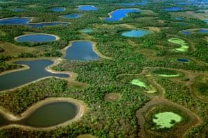 El Pantanal es herencia nacional': protegiendo a los humedales más ...