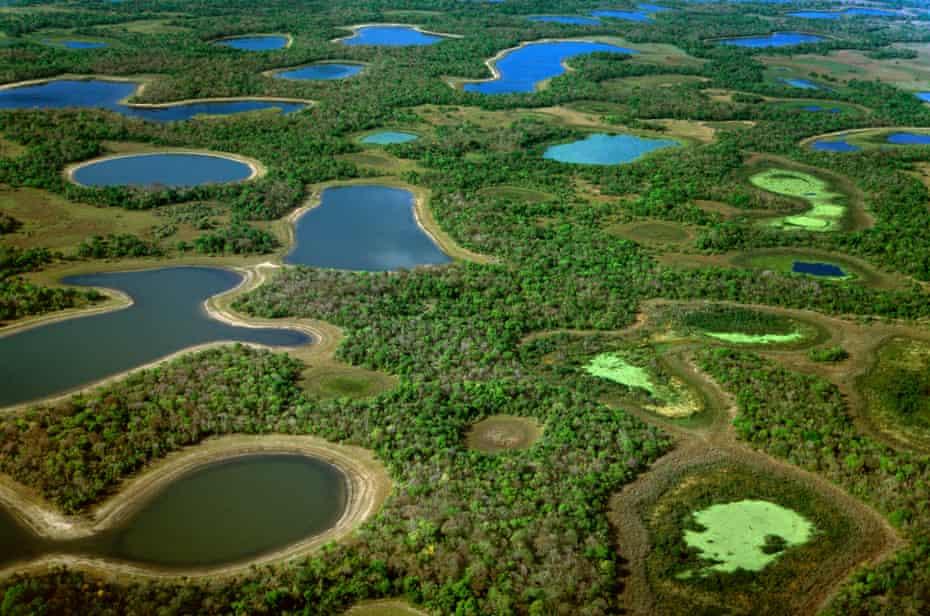 Lagoons during dry season, Pantanal, Brazil