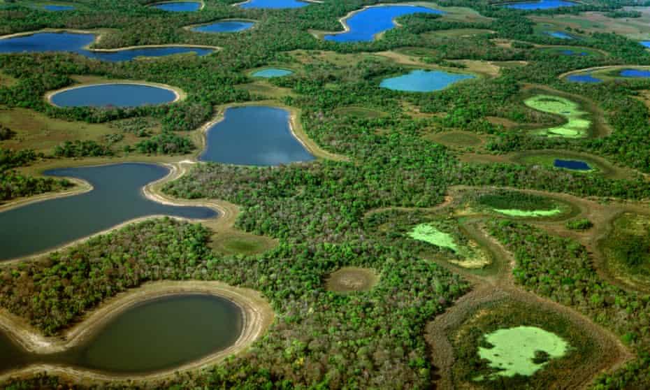 Lagoons during dry season (aerial), Pantanal, Brazil (smaller)