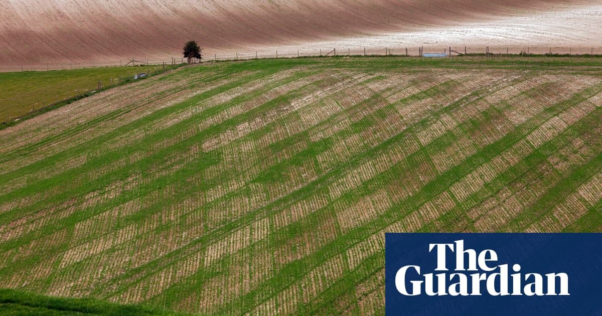 The uncertain future that small farmers face after tariff-free trade deals