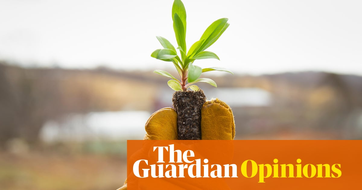 Can we feed 10 billion people on organic farming alone? | Guardian