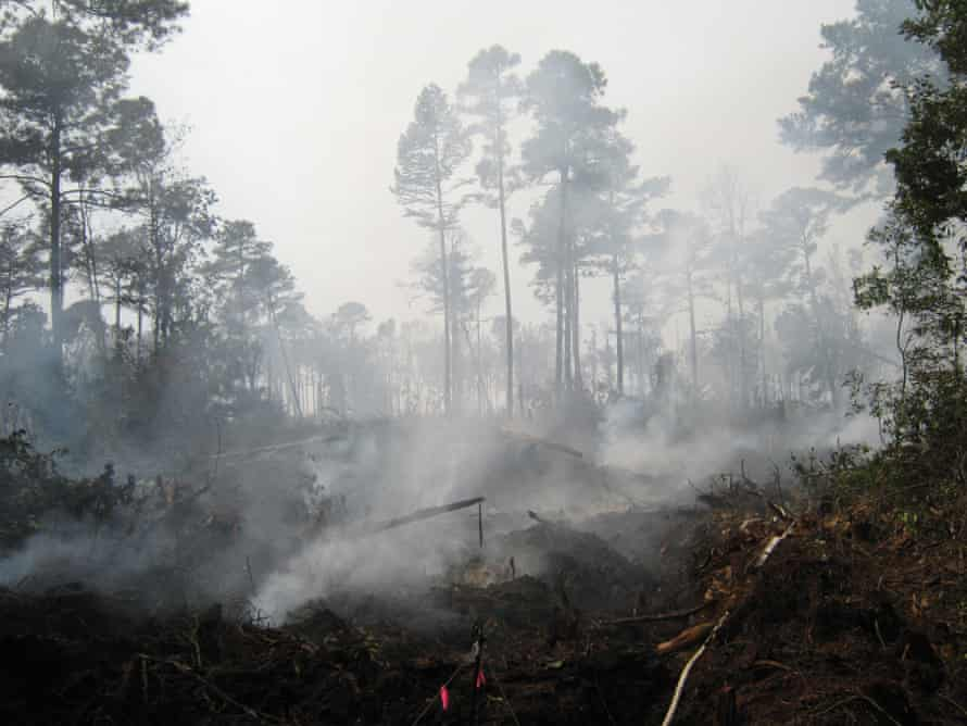 Burning peatland