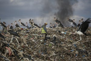 A man who scavenges recyclable materials for a living walks past Marabou storks feeding on a mountain of rubbish amidst smoke from burning trash at Dandora, the largest dump in the capital Nairobi.