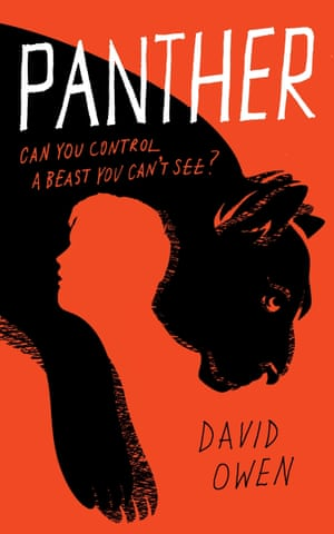 Panther by David Owen (Little, Brown Book Group)