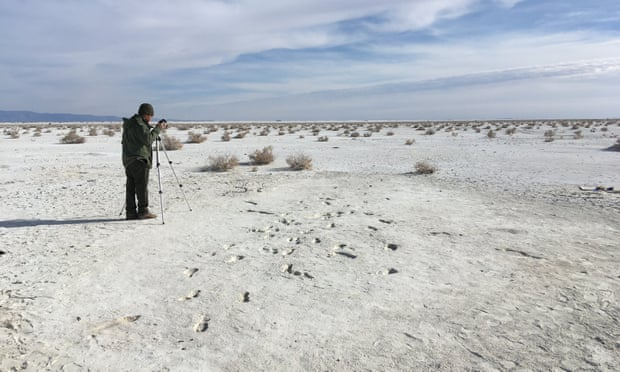 A series of excavated footprints in the foreground can be seen at Alkali Flat in White Sands National Monument in New Mexico.