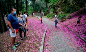 People enjoy the Los Colombos forest, in Zapopan, Mexico on 1 August 2020.
