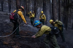 Inmates from Warner Creek correctional facility, working as firefighters, mop up hotspots from the Brattain Fire.