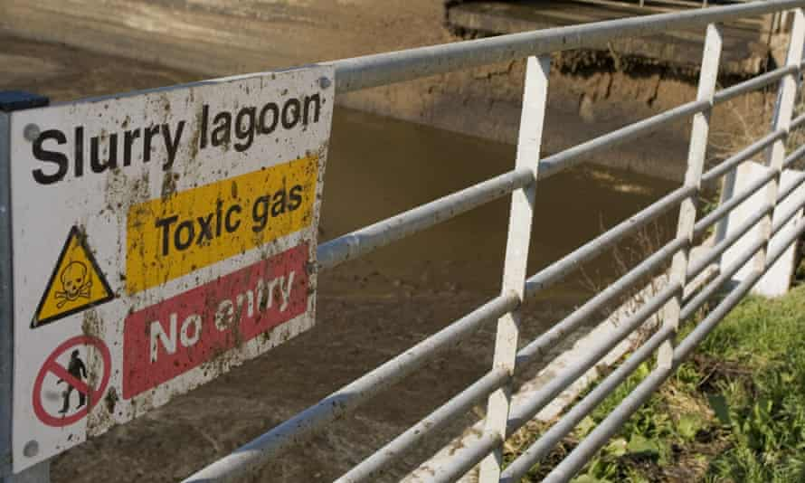 'Slurry lagoon, Toxic gas, No entry' sign on gate at open slurry store for dairy cattle in Dorset