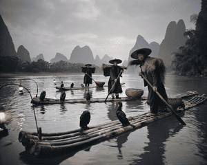 Yangshou, Guilin, China. Cormorant fishing is a traditional method where trained cormorants were used to fish the rivers. To control the birds, the fishermen tied a snare at the base of the bird's throat that prevented it from swallowing the fish. In the neighbourhood of Yangshou, Guilin, the fishmen still perform this ritual.
