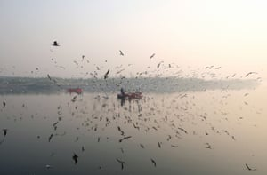 Migratory birds fly around rowing boats on the Yamuna river during a morning of heavy air pollution in New Delhi.