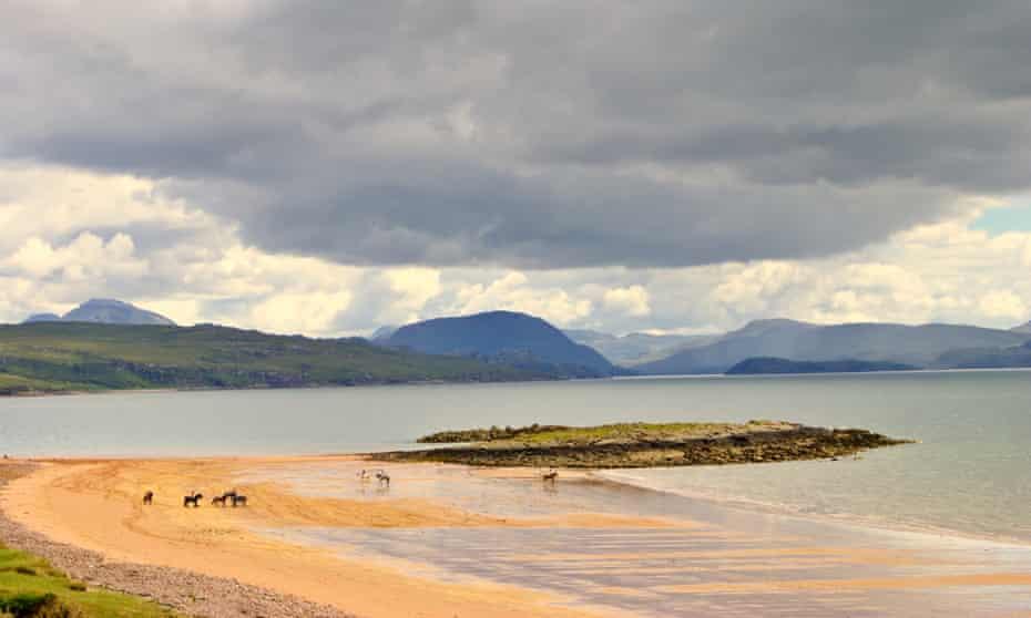 Horses on Redpoint beach, Wester Ross