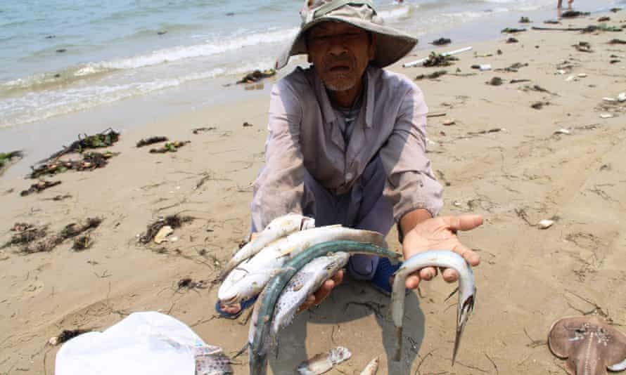 A villager shows dead sea fish he collected on a beach in Phu Loc district, in the central province of Thua Thien Hue.