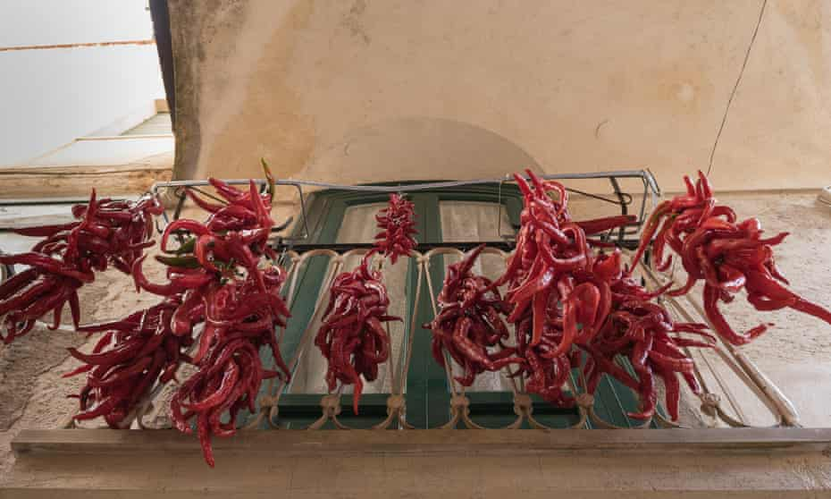 Peppers in southern Italy