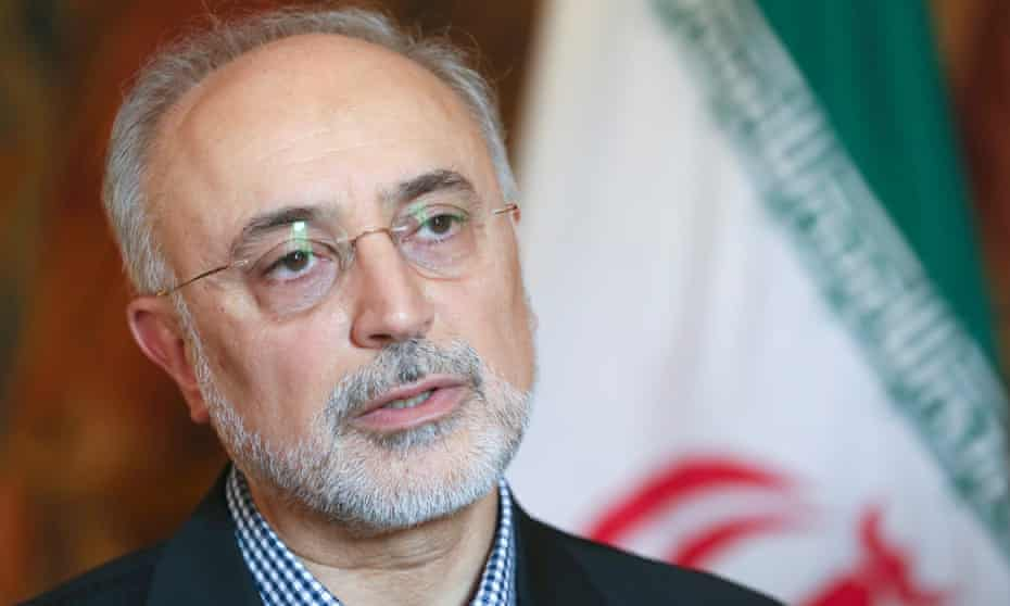 Ali Akbar Salehi, an Iranian vice-president and head of the country's atomic energy organisation.