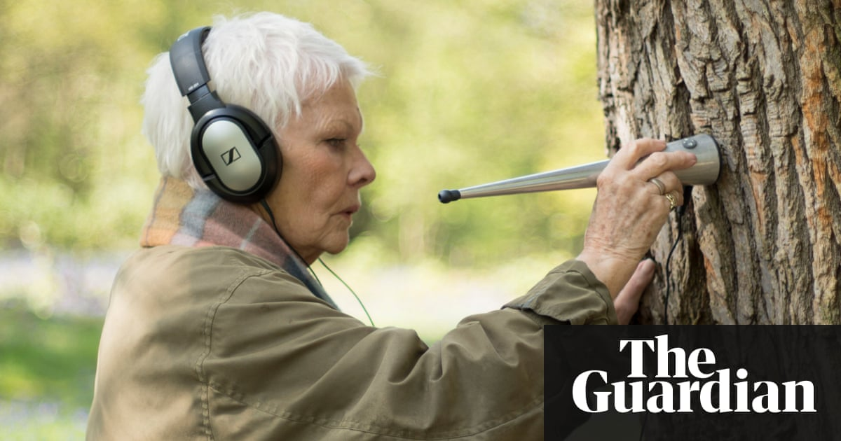 Judi dench my passion for trees review from woodland judi dench my passion for trees review from woodland stethoscopes to shakespeares sonnets television radio the guardian sciox Images