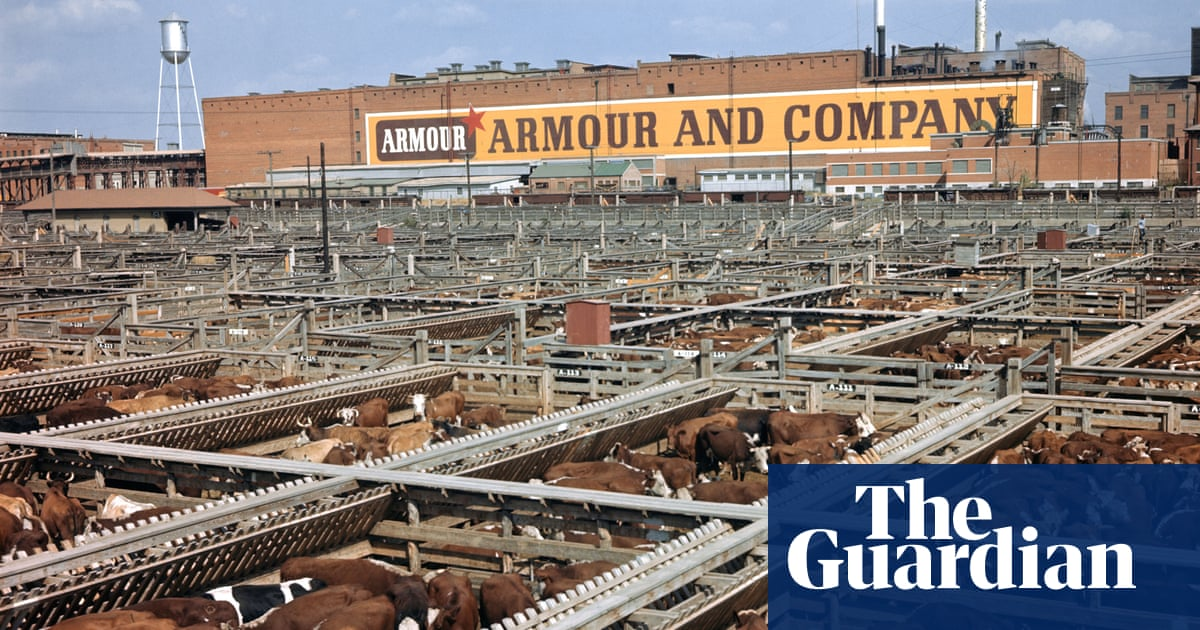 The price of plenty: how beef changed America – podcast