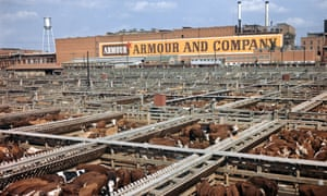 1960S FORT WORTH TEXAS HEREFORD CATTLE STOCKYARDS