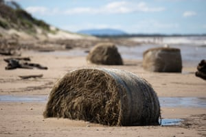 Hay bales on a beach