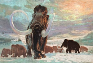 The distinctive silhouettes of the distant mammoths recall those painted on cave walls thousands of years ago. Perhaps Burian, who spent so much time imagining the prehistoric world, felt a certain kinship with the Paleolithic artists who first depicted these animals.