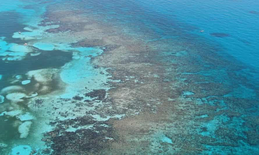 Carysfort reef off Key Largo, Florida.