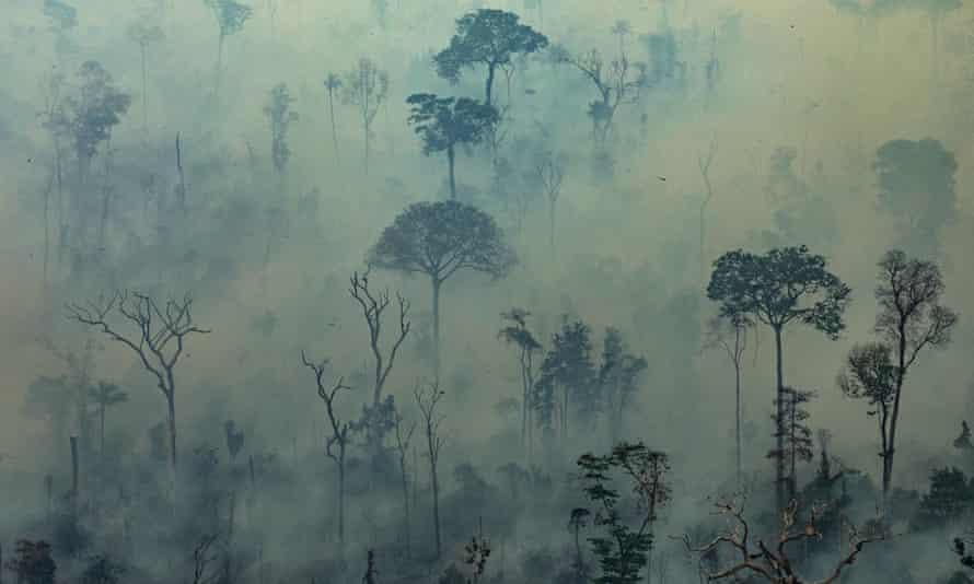 Forest fires in Altamira, Para State, Brazil