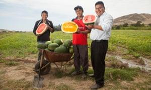 Men holding watermelons in Peru