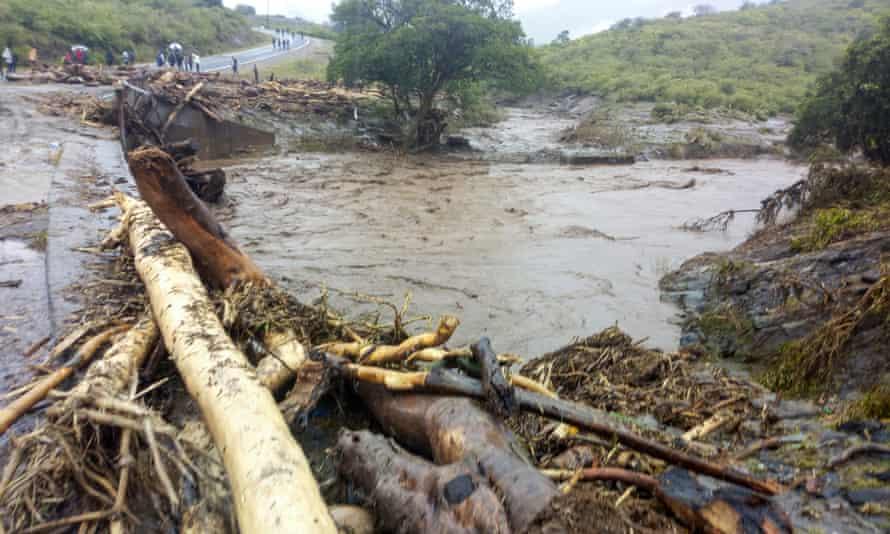 Trees felled in Kapenguria, West Pokot county in northwestern Kenya