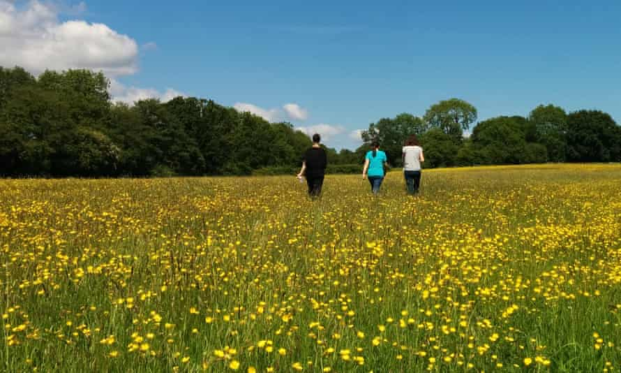 Women-only Healthily Happy Retreat, Raw Horizons, Yorkshire