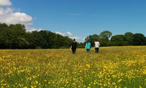 Women in buttercup meadow Healthily Happy Retreat, Raw Horizons, Yorkshire