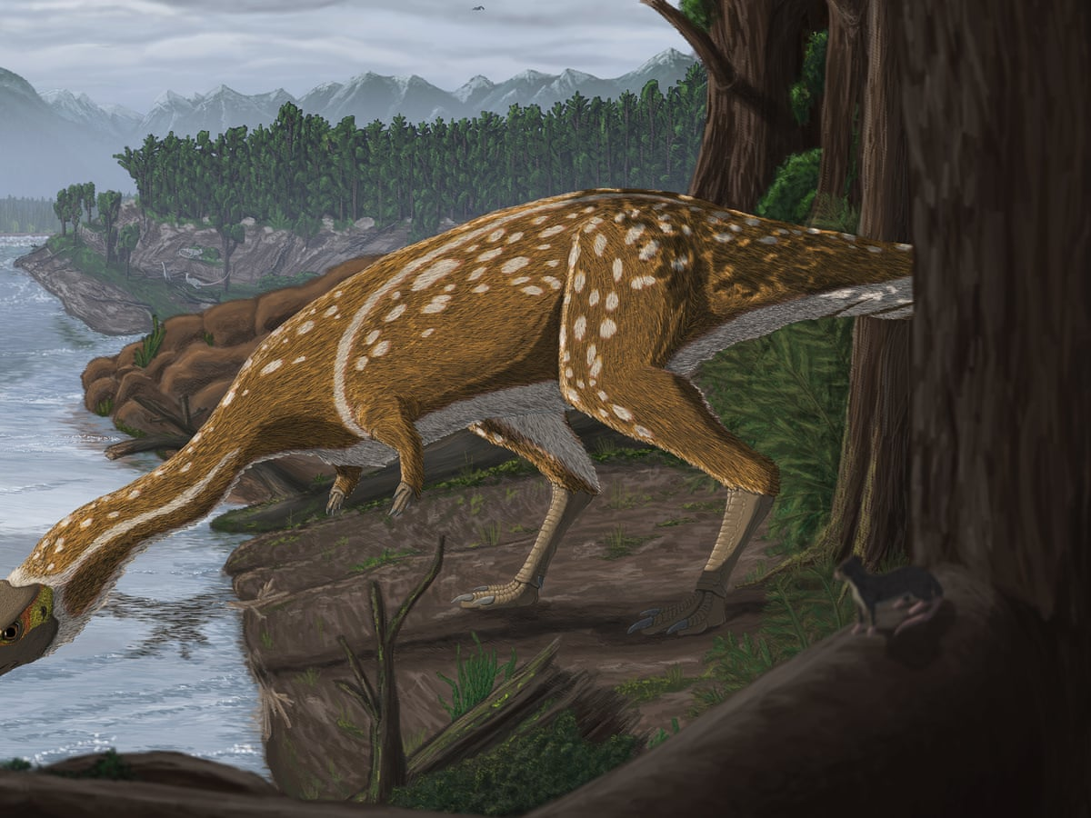 Rare Long Necked Dinosaur That Roamed The Polar World Unearthed In Australia Science The Guardian