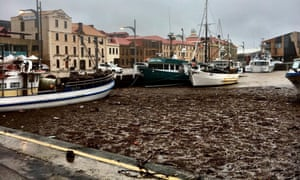 Hobart after flooding and storms