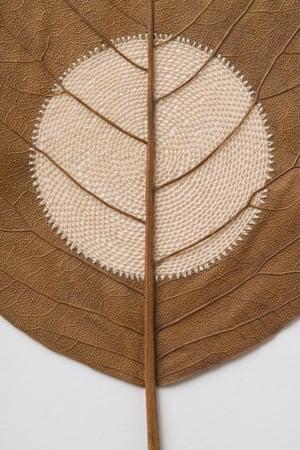Moon XXX (detail), a leaf sculpture by Susanna Bauer