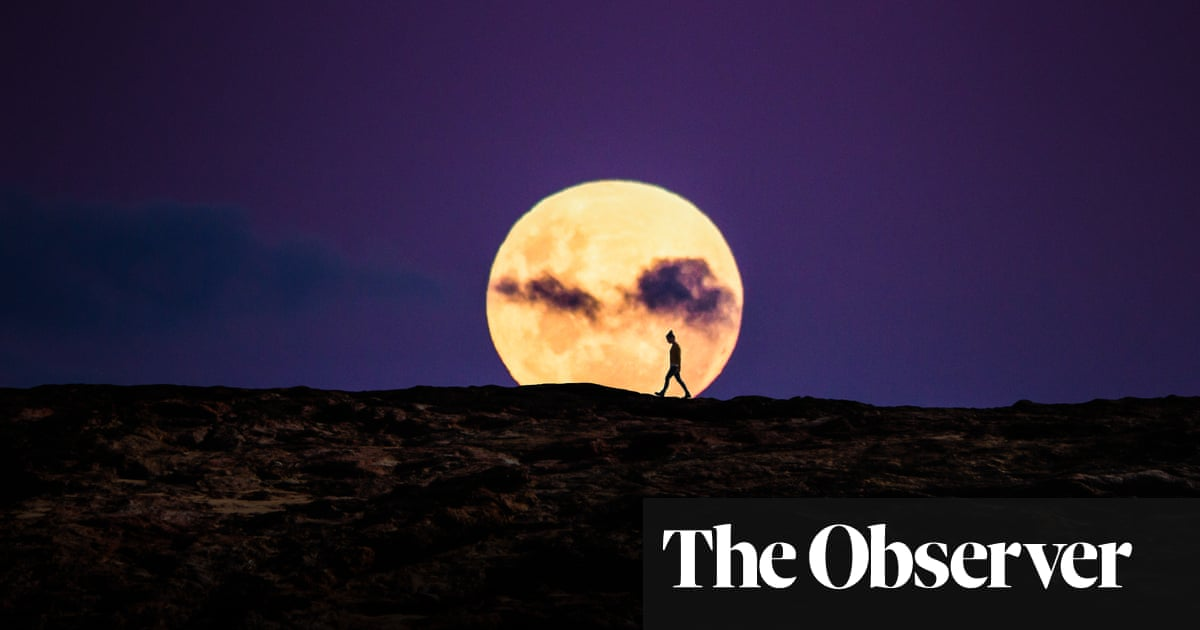 Astronomical events in 2019 | Science | The Guardian