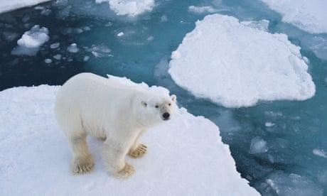 I am an Arctic researcher. Donald Trump is deleting my citations