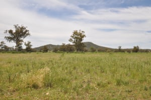 Gomeroi country on the Liverpool plains, west of Watermark Mountain.