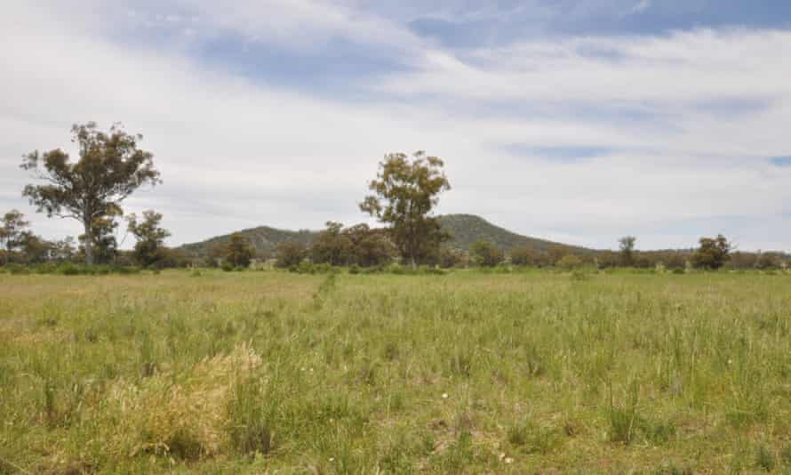 Green field near Watermark mountain. Despite fierce opposition from locals and traditional owners, the site was to be the location of the Shenhua Watermark mine.