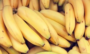 'Although a banana costume is likely to be yellow, it could be any shade of yellow – or green or brown for that matter,' the opinion said.