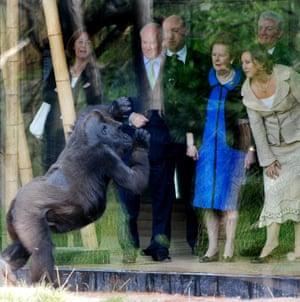 Margaret Thatcher visiting London Zoo's Gorilla Kingdom in 2007