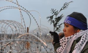 A woman holds a branch of cedar during a prayer ceremony, while protesting against the Dakota Access pipeline.