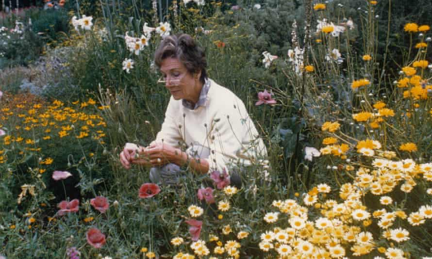 Beth Chatto's books offered her ideas to a wider market and she became justly famous, attracting a huge following among aspiring gardeners at a time when only a few nurserymen were beginning to preach naturalism
