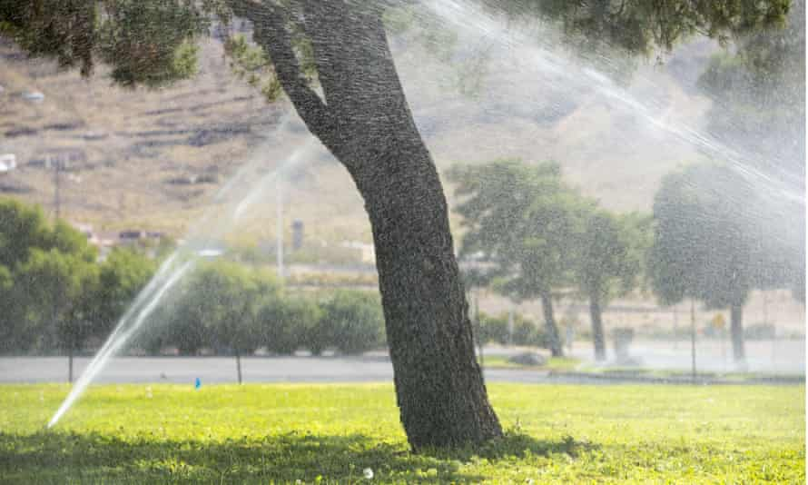 drought irrigation