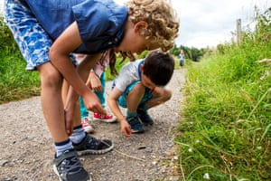 Creepy crawlies and outdoor activities in the South Downs national park
