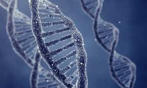 Should humans take control of their genetic fate, and rewrite the DNA of future generations?
