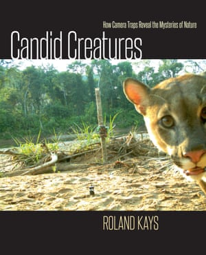 Candid Creatures: How Camera Traps Reveal the Mysteries of Nature, by biologist Roland Kays. Published by Johns Hopkins University Press.