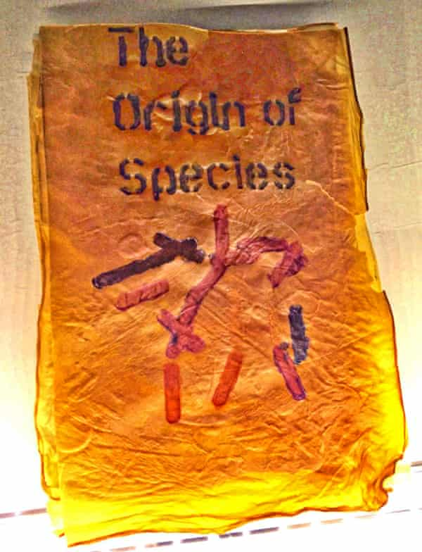 The Origin of Species by Charles Darwin, grown with bacteria by bacteriologist Dr Simon Park.