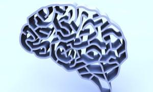 Brain complexity