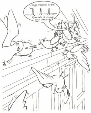 David Jones produced this cartoon to illustrate his 'invention' of audible vertigo. He captioned it: 'Vertigosound could clear public buildings humanely of starlings, pigeons etc, by making the birds overbalance from the narrow ledges.'