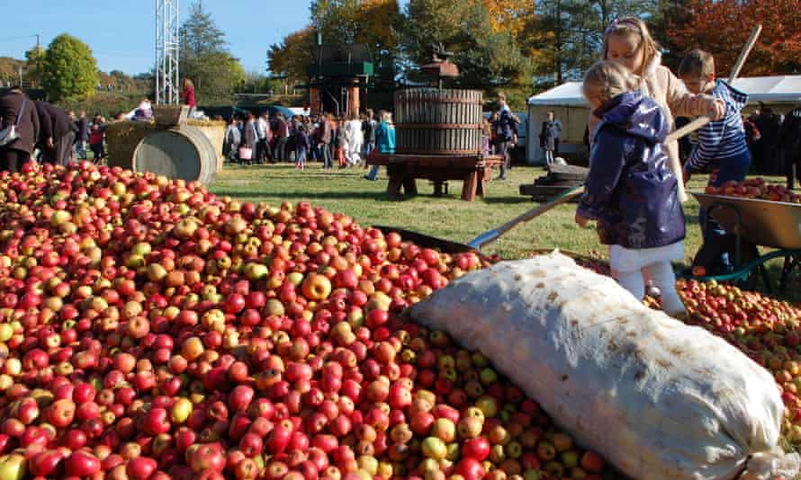 A huge pile of rosy-red apples at a fete
